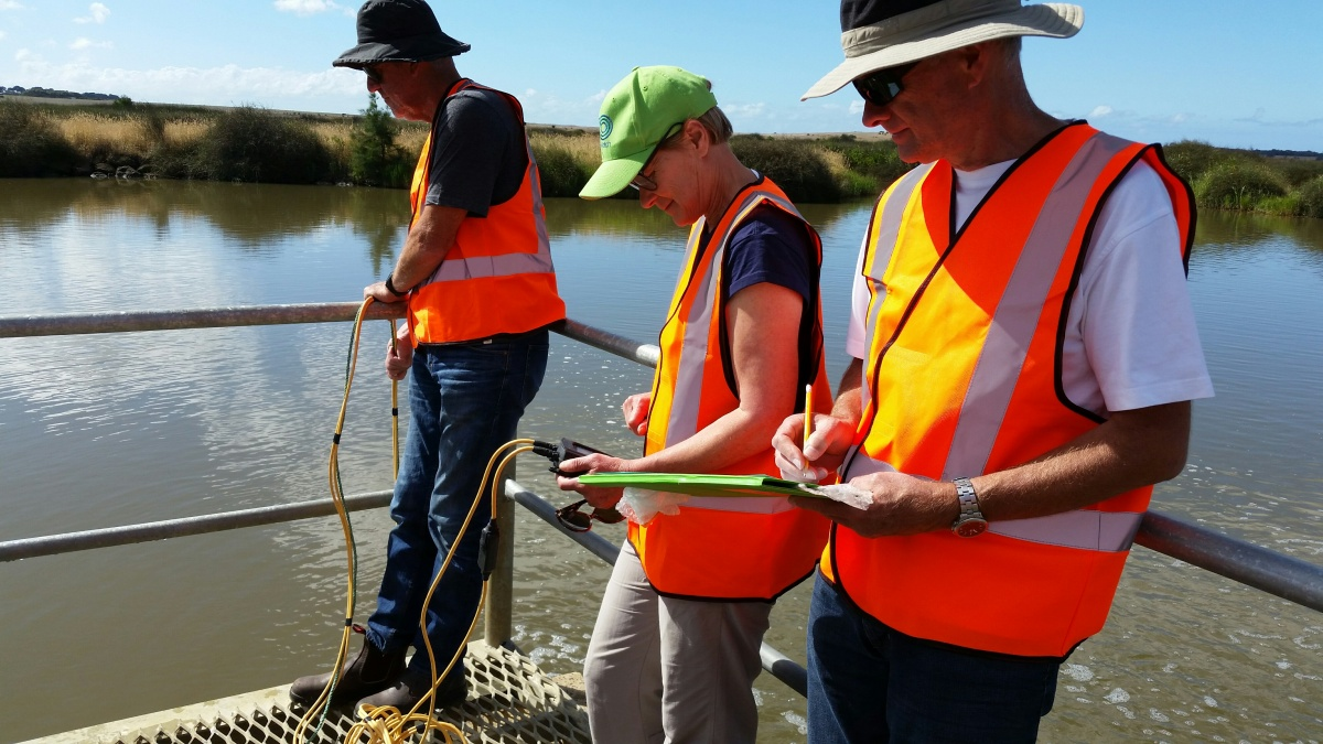 Barwon EstuaryWatch Lends a Hand at Reedy Lake