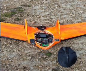 Fixed-wing Drone used for Cape Tulip mapping