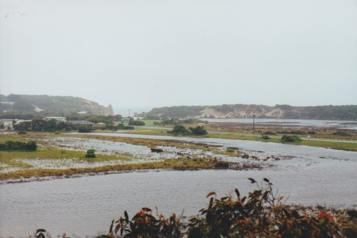 Painkalac Creek, Anglesea 2000