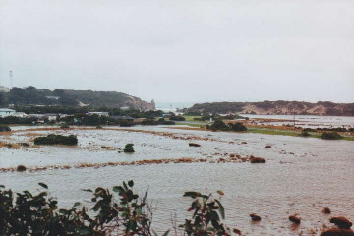 Painkalac Creek, Anglesea 2001