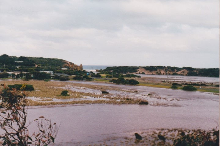 Painkalac Creek, Anglesea 2003