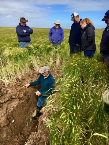 cundare soil pit