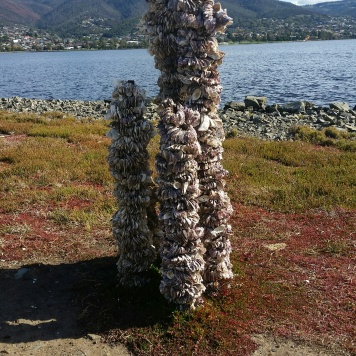 Art installation on the Derwent River Estuary.