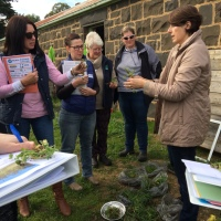 Women on Farms workshops increase the confidence of rural women