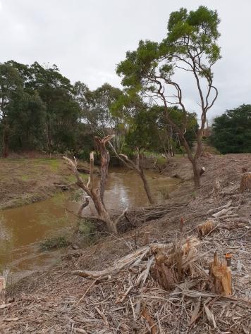 Barwon River, Birregurra