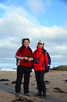 Birdlife Australia volunteers monitoring Hooded plovers at the Thompson Creek estuary